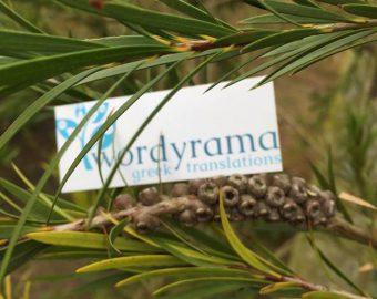 Wordyrama Card Photo 1