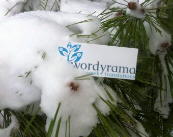 Wordyrama Card Photo 2